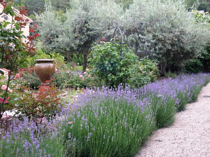 17 lavender garden designs ideas design trends for Garden design ideas lavender