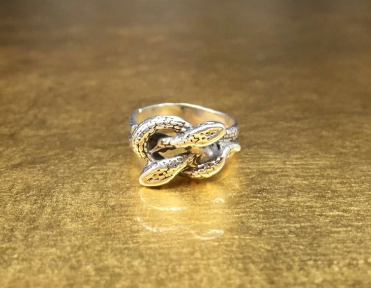 Retro Snake Ring Idea