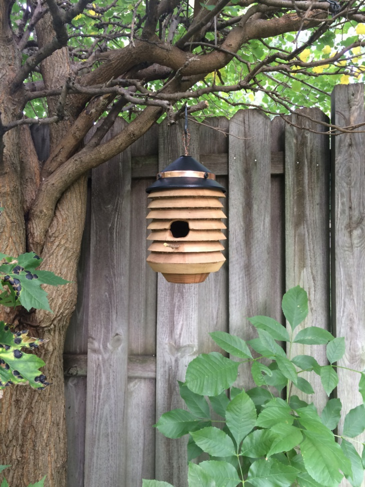 wooden rustic birdhouse