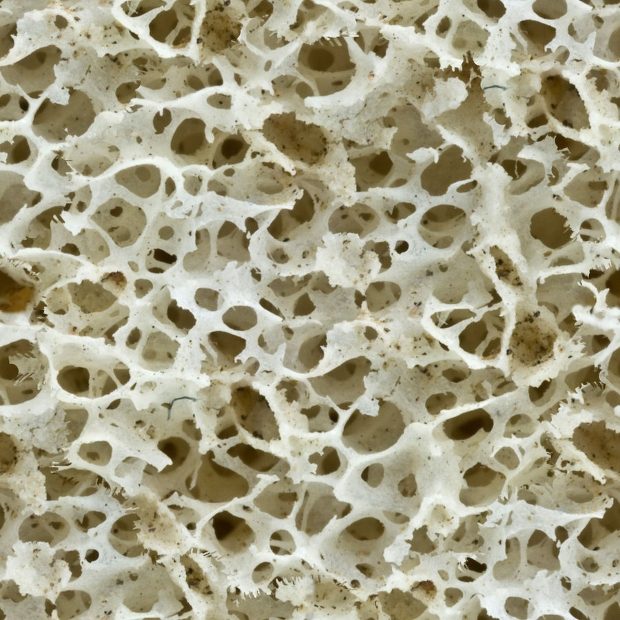 Seamless Bone Structure