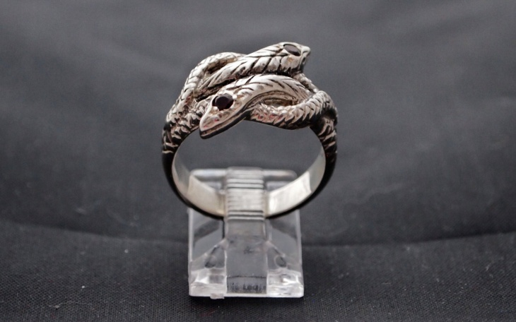 unique twin snake ring
