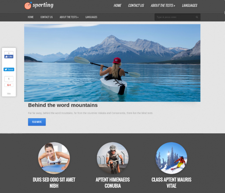 Clean Free Sports WP Theme