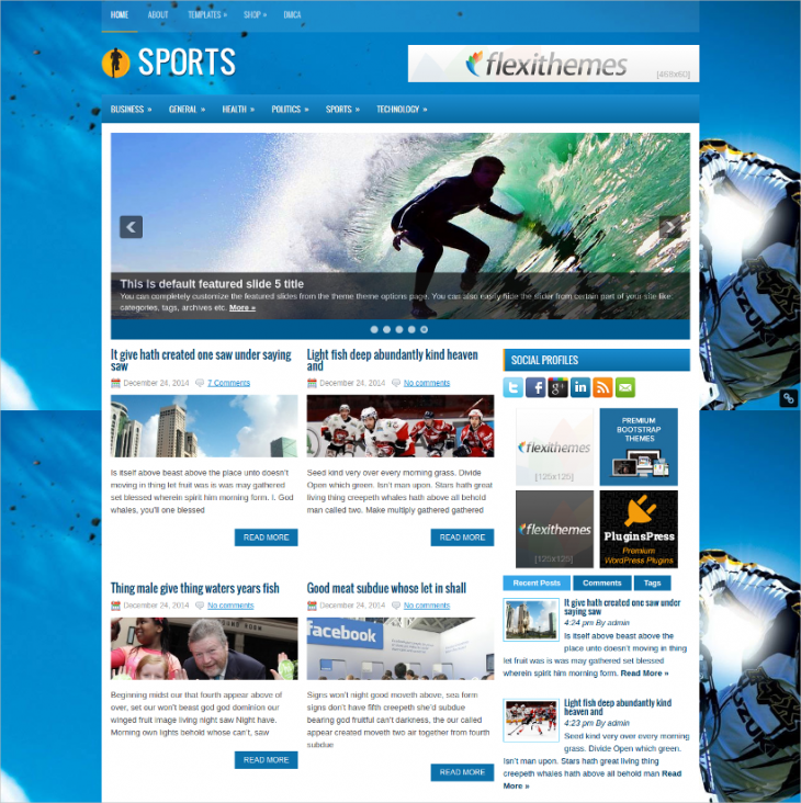Custom Widget Free Sports WordPress Theme