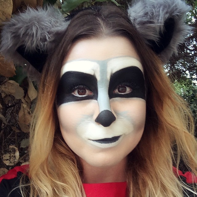 Cute Raccoon Face Makeup