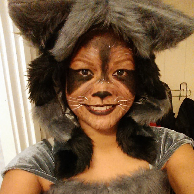 Raccoon Costume Makeup Design