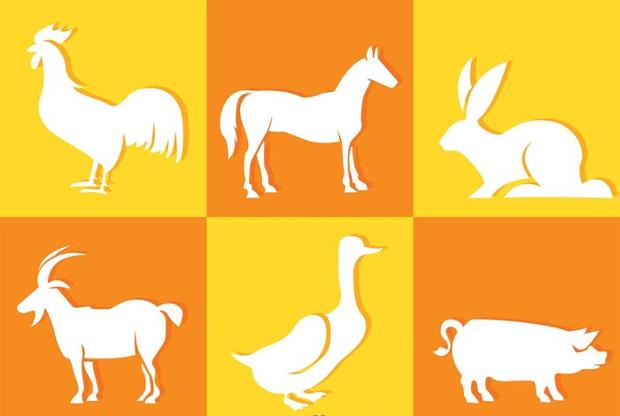 white animal silhouette icons