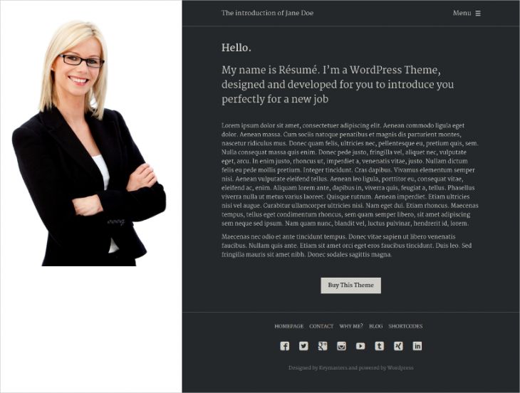 Job Resume Application WordPress Theme