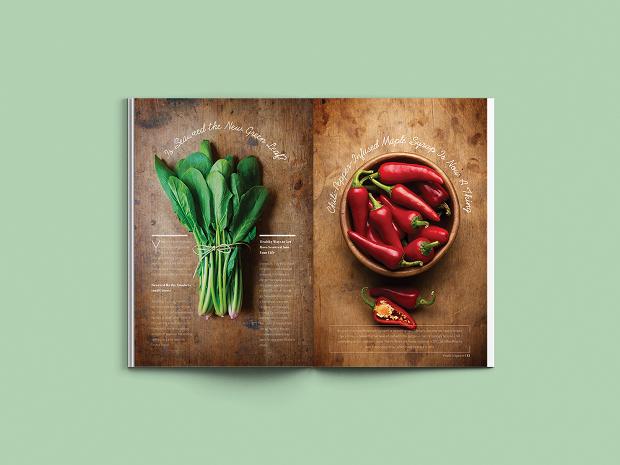 indesign food magazine design