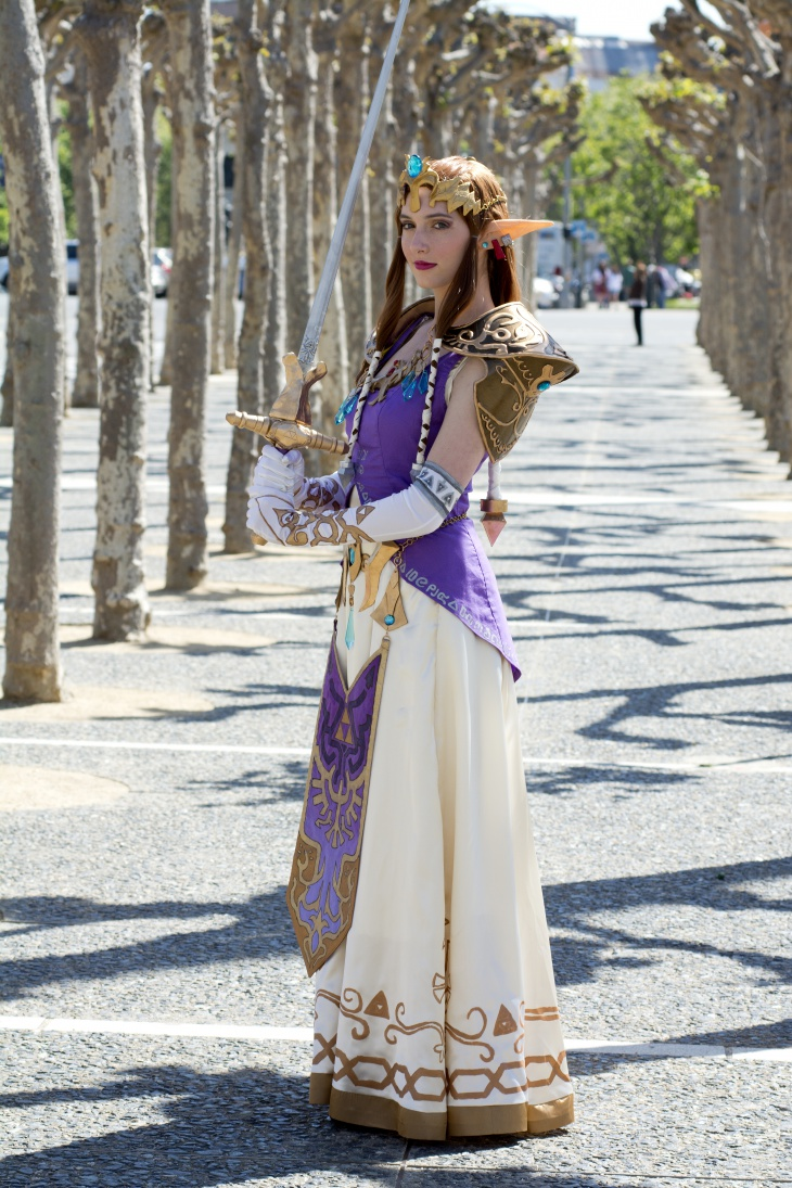 Zelda Fancy Dress Design