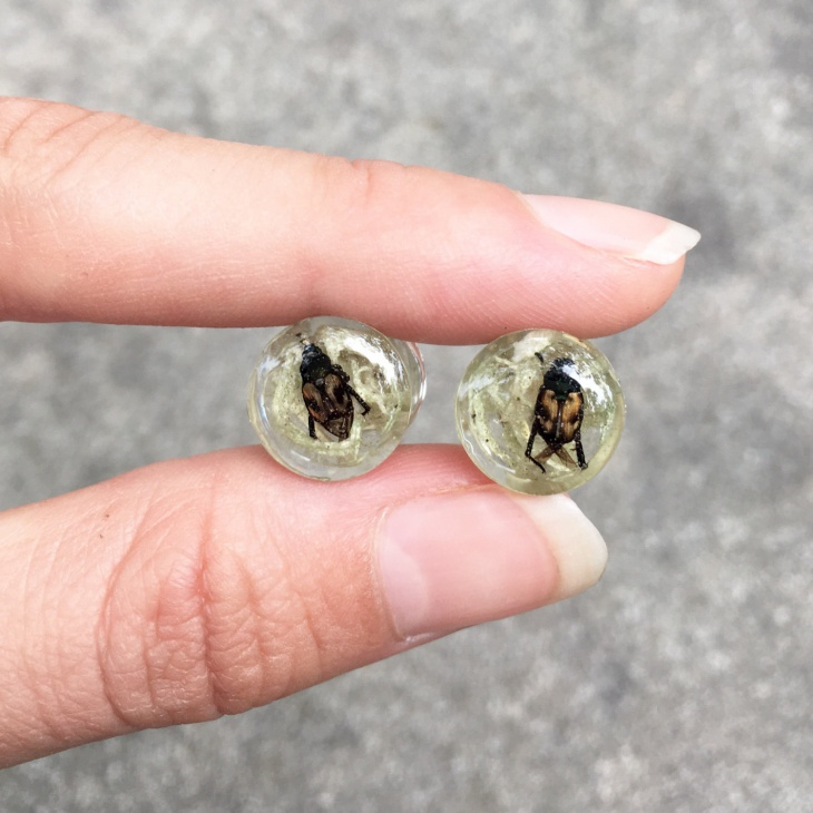 Moss Insect Earrings