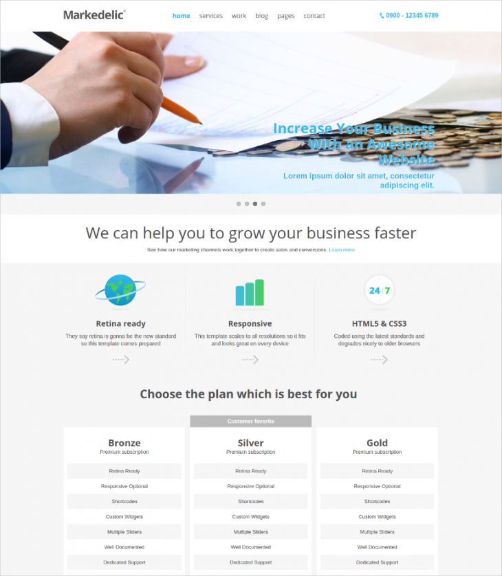 Responsive Marketing WordPress Theme