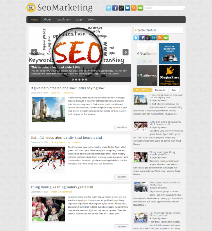 Free SEO Marketing WordPress Theme