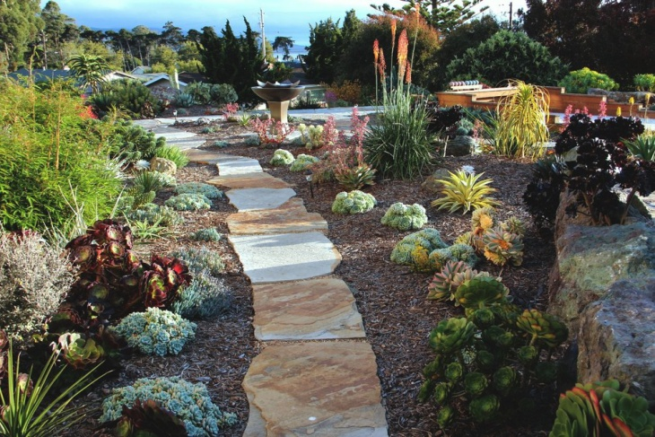 traditional succulent garden