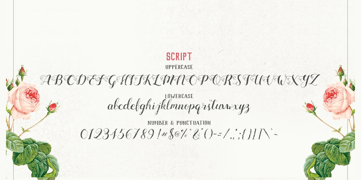 mightype font