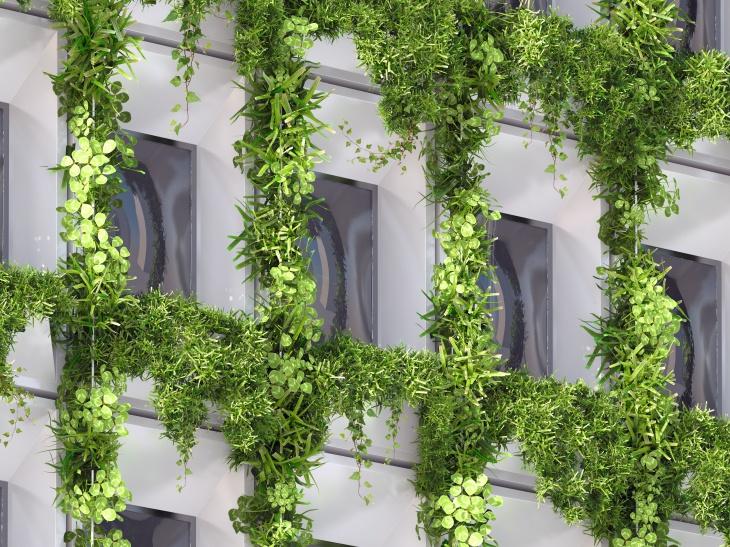 Green Façade Details – II