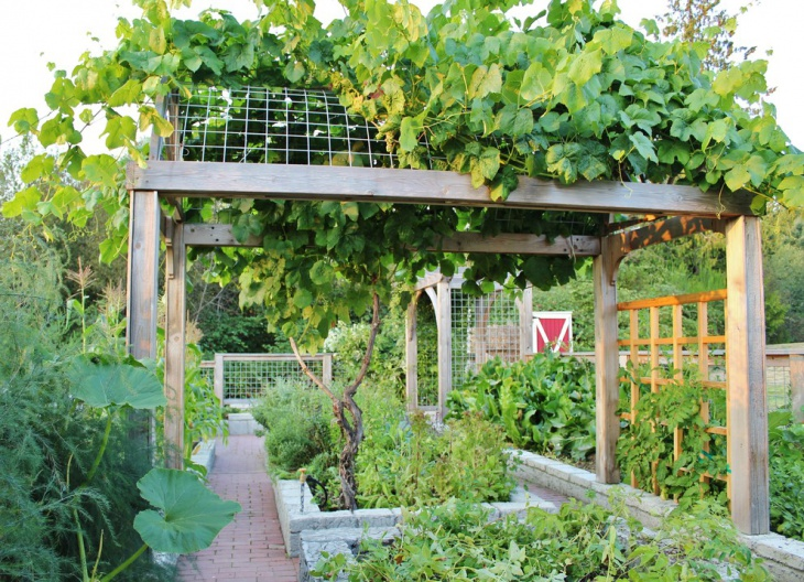 Farmhouse Garden Trellis Design