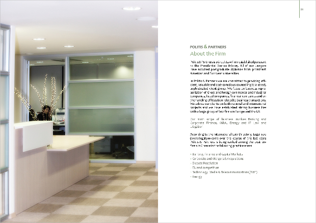 Corporate Law Firm Brochure