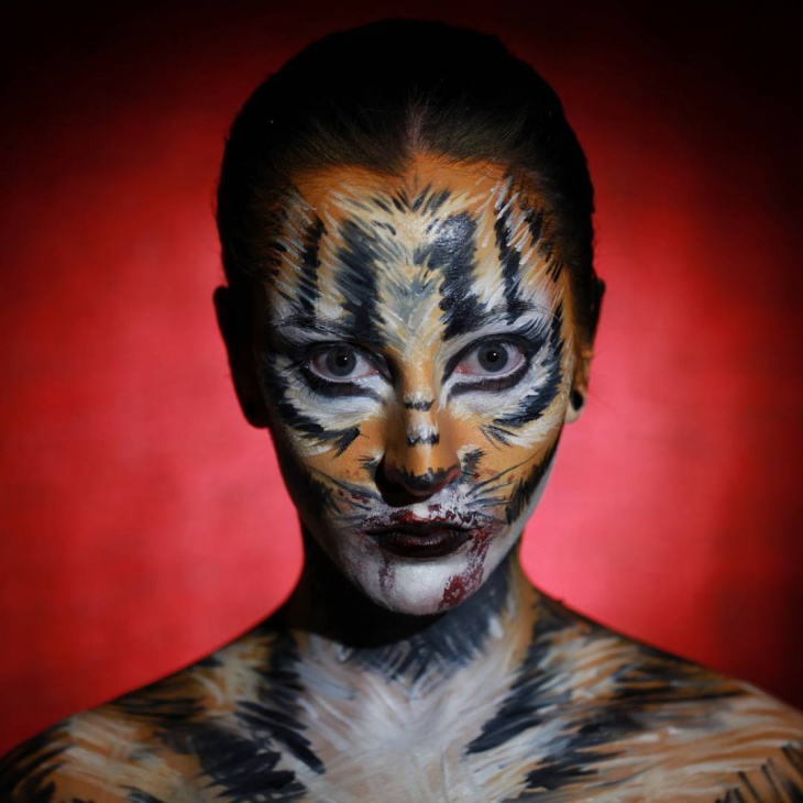 Halloween Tiger Face Makeup