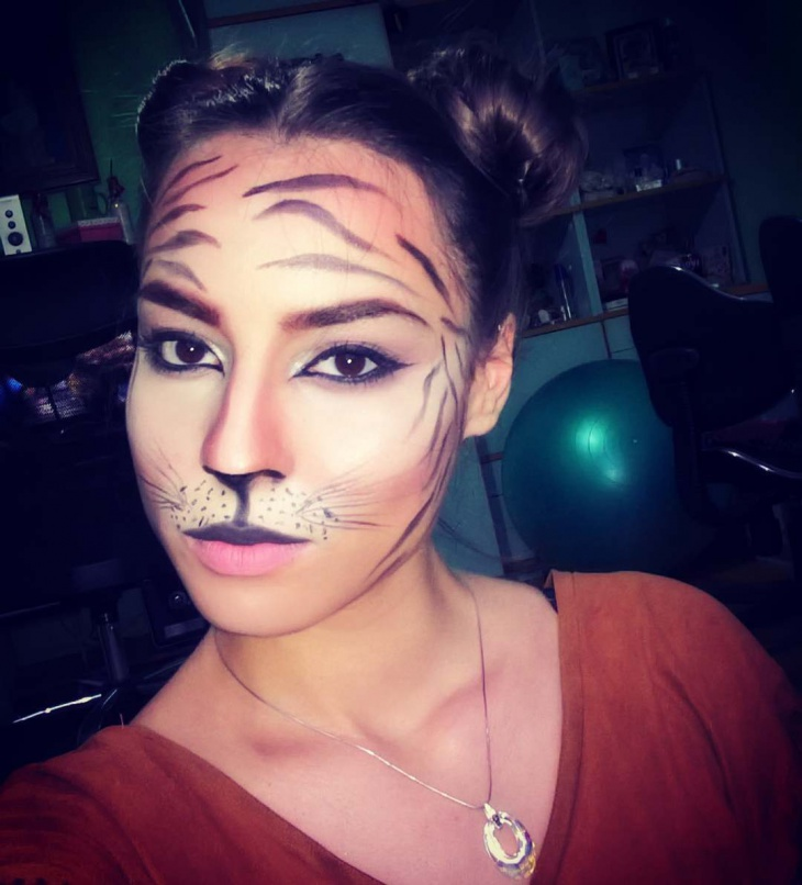 Simple Tiger Face Makeup