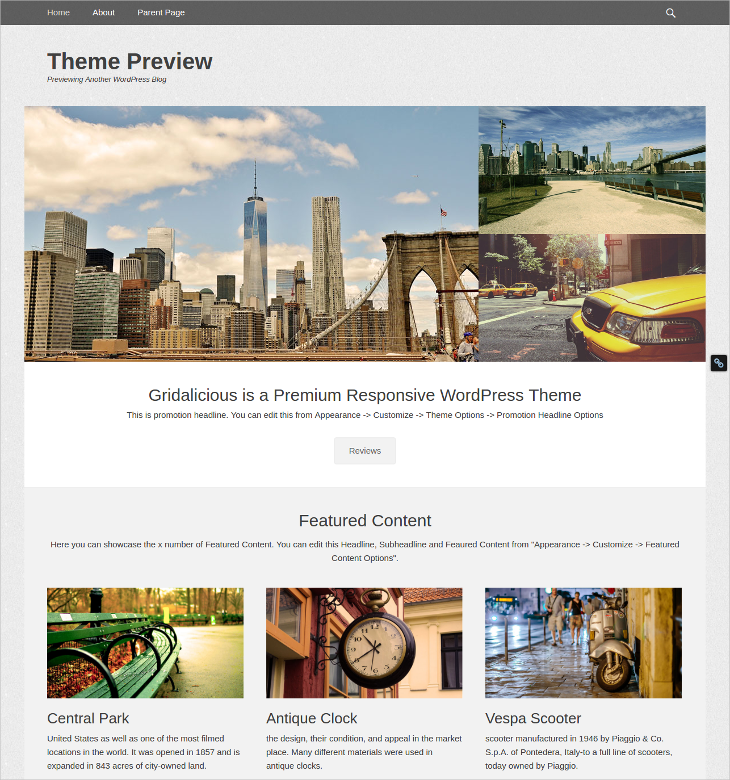gridalicious wordpress theme