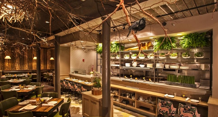 Best Restaurant Kitchen Designs