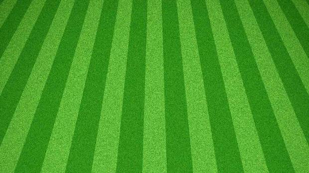 mowed green grass texture