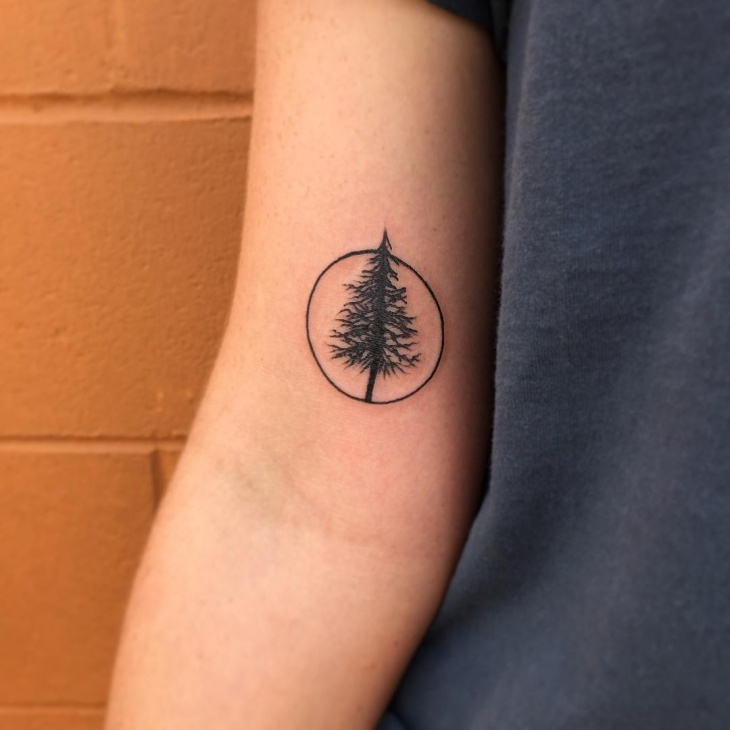 small pine tree tattoo design