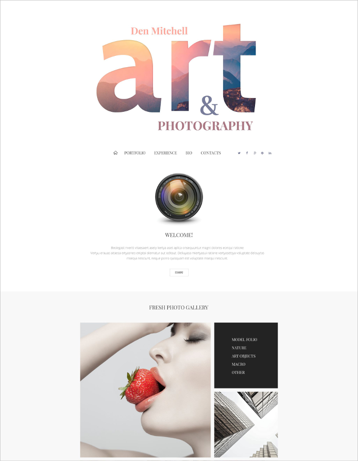 professional photographer joomla template1