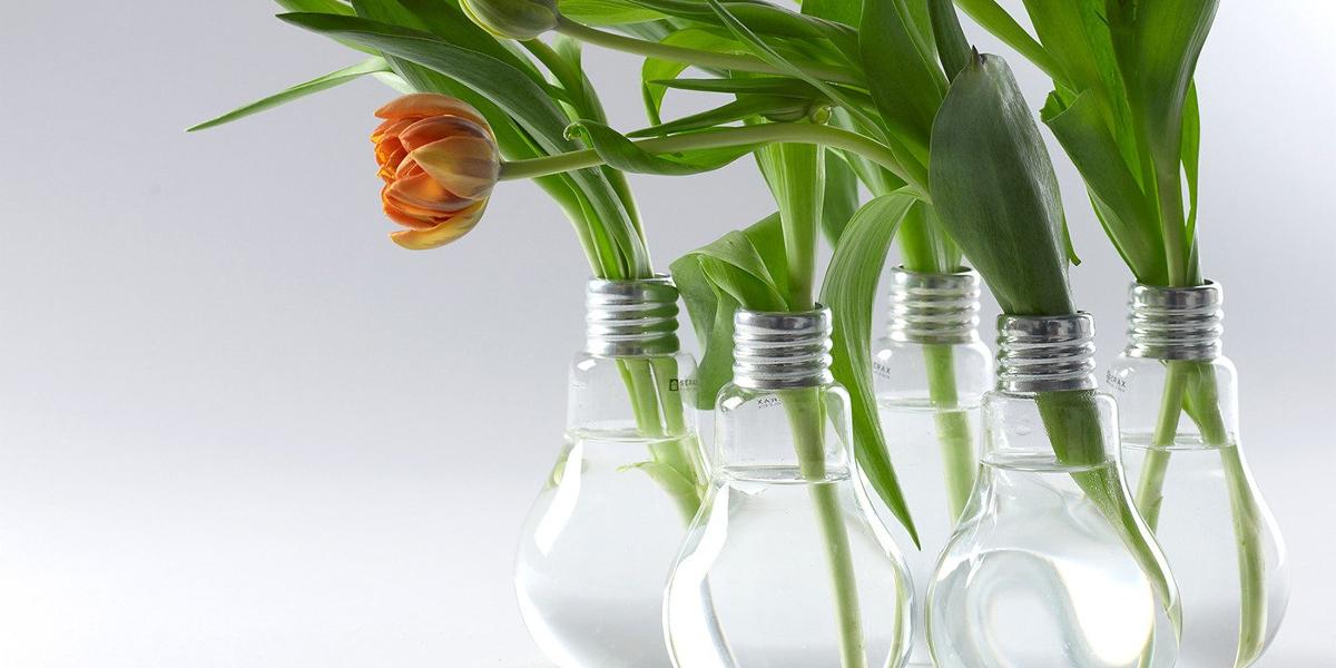 bulb-shaped Edison Vase