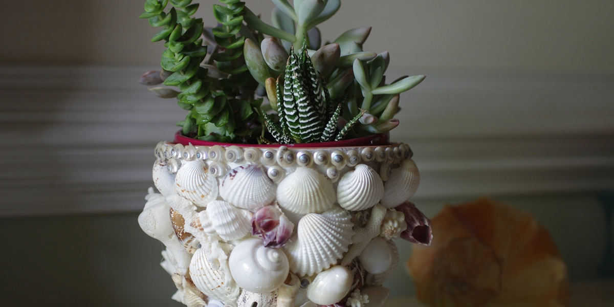 seashells vase design
