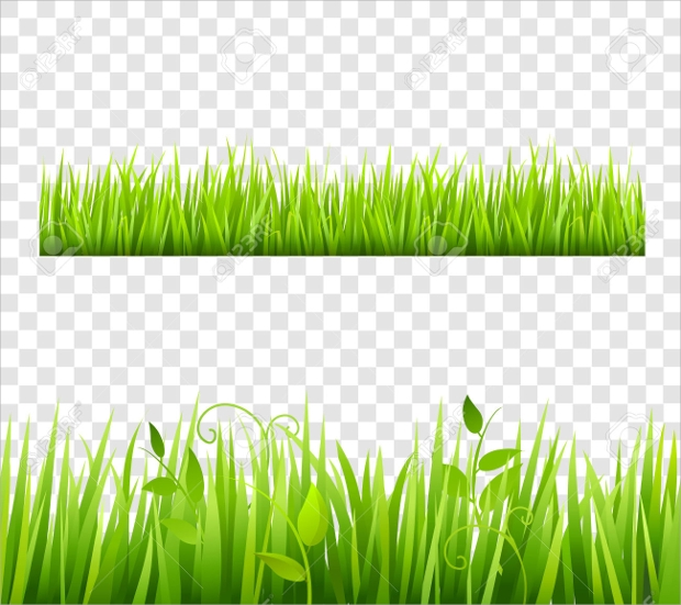 grass background clipart - photo #49