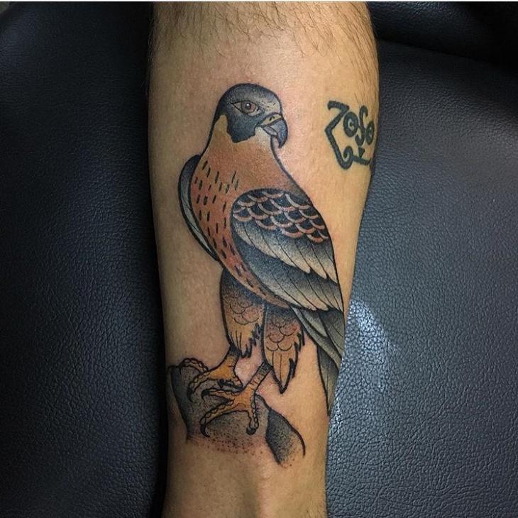 Realistic Falcon Tattoo Idea