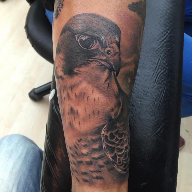 Falcon helmet tattoo design pictures to pin on pinterest for Atlanta falcons tattoo
