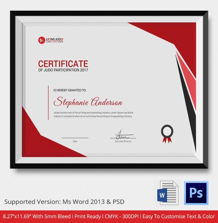 Sample Judo Certificate