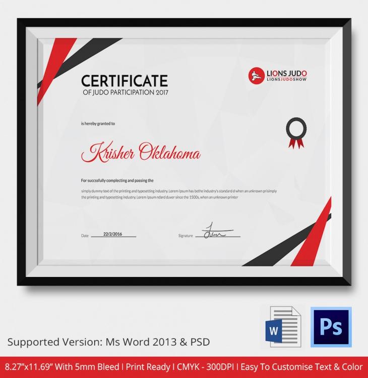 Champion Judo Certificate