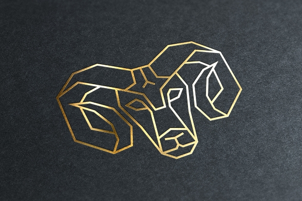 geometric animal logo design