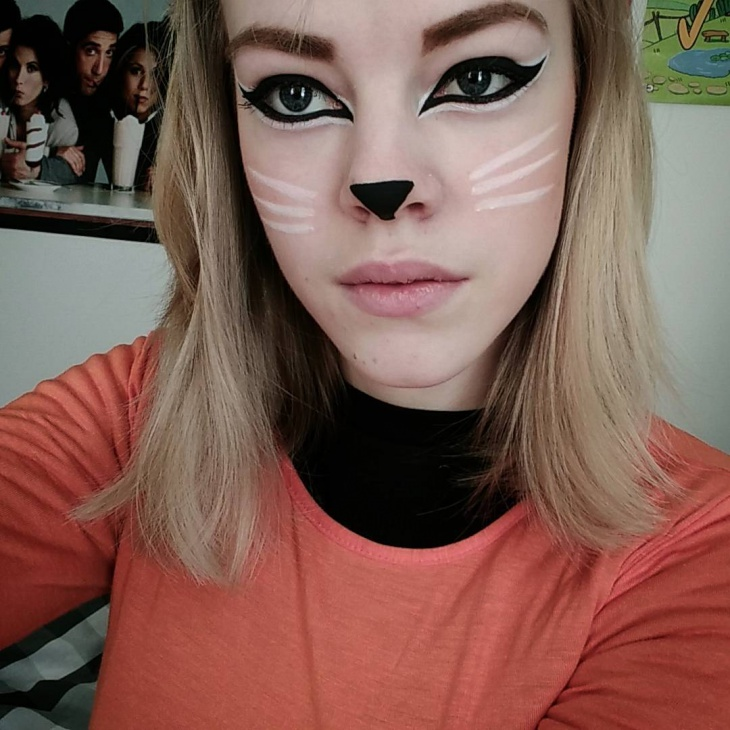 fox fancy dress makeup