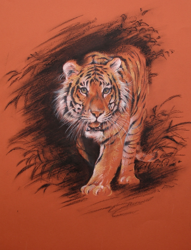 wild animal drawing