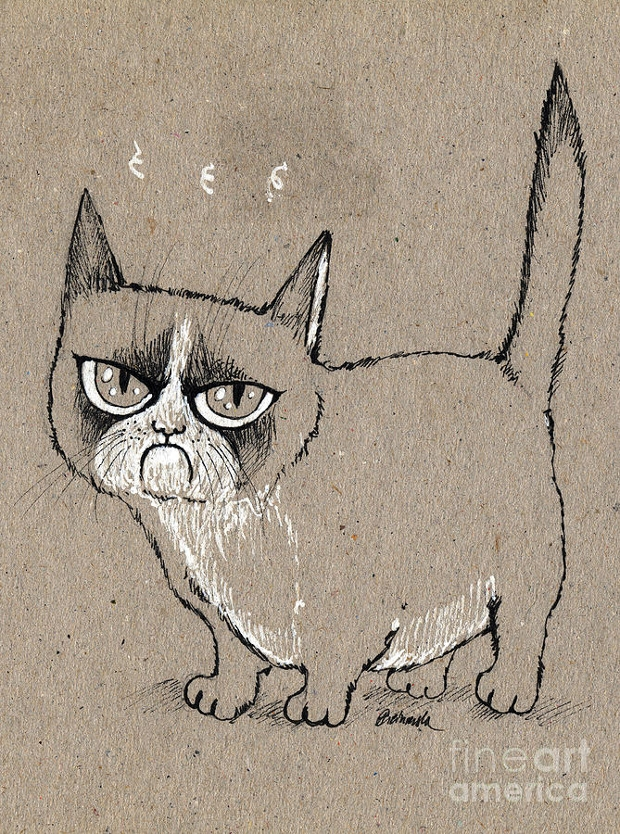 grumpy cat drawing
