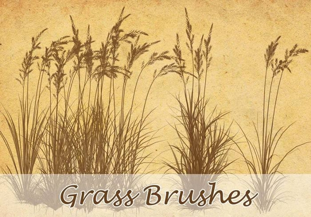 Grass Field Brushes