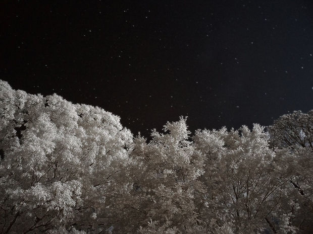 infrared-night-photography