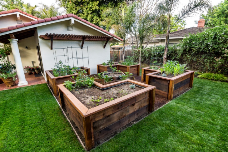 backyard raised garden design