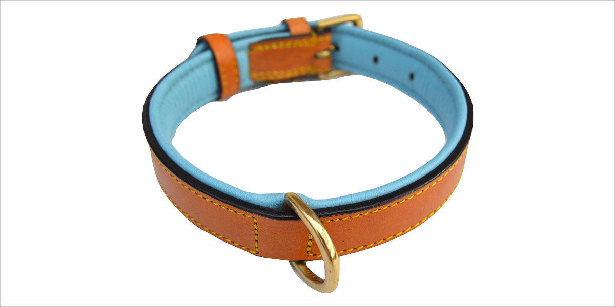 luxury real leather padded dog collar – the capri collection