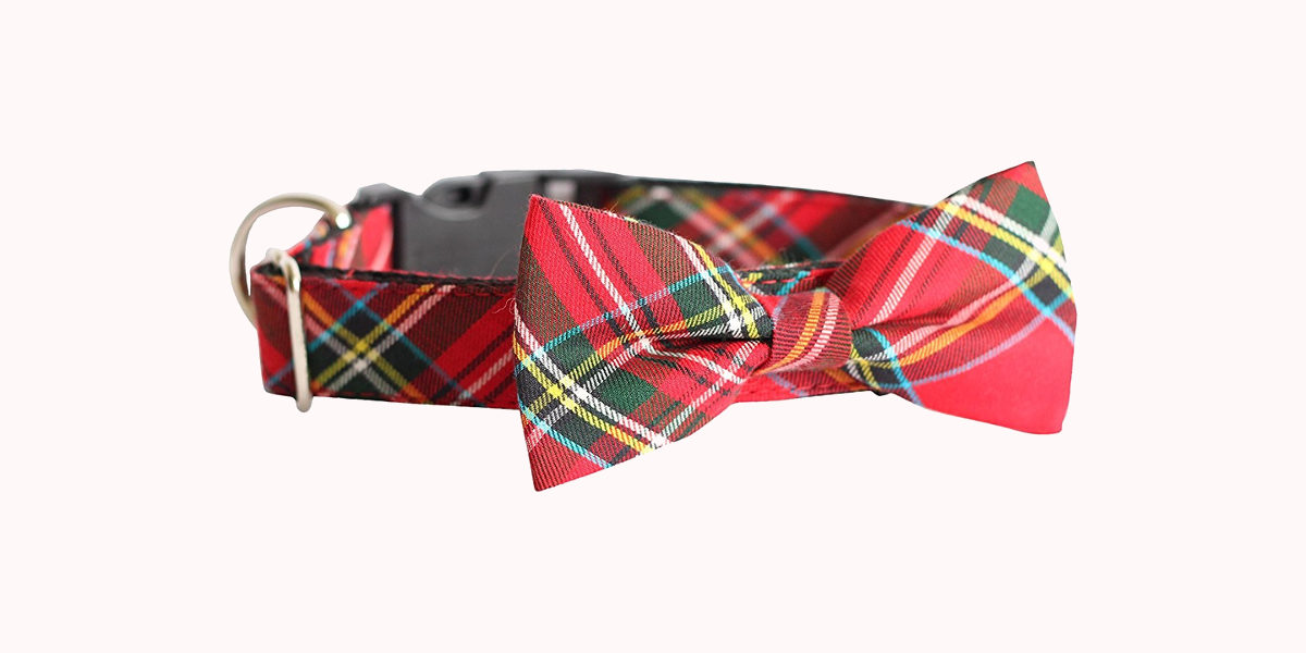 usagiteam bowtie collar set