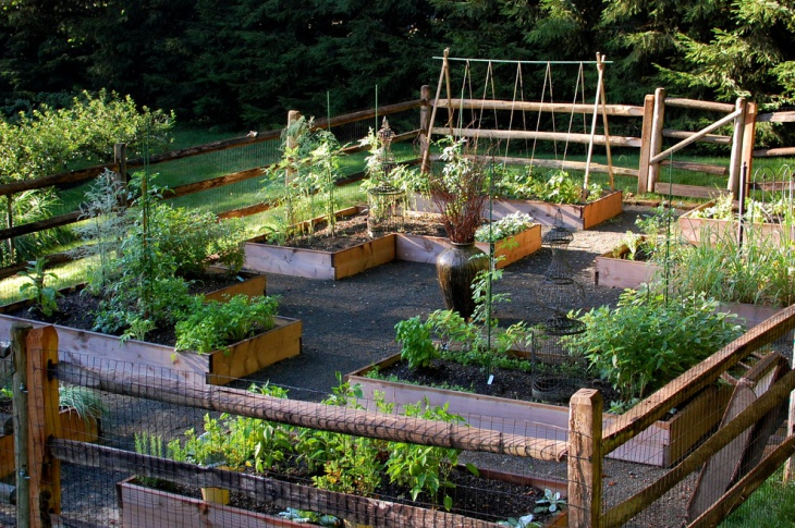 Edible Cottage Garden Idea