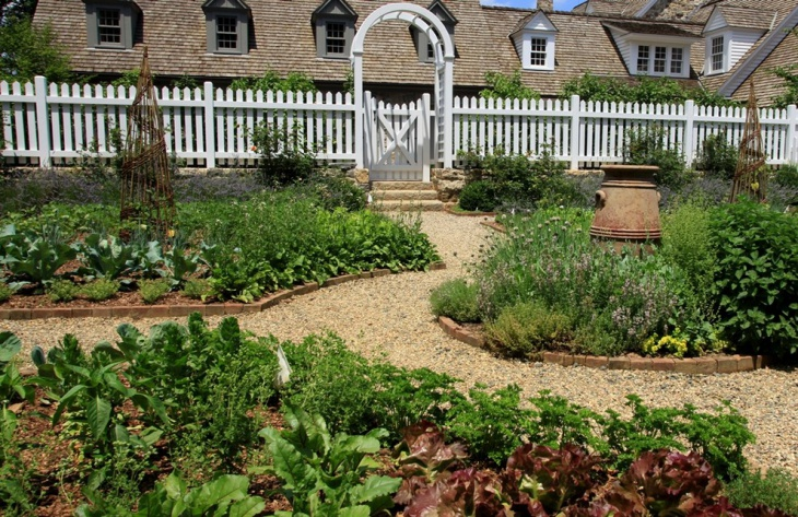 Edible Herb Garden Design