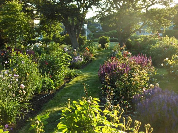 Edible Perennial Garden