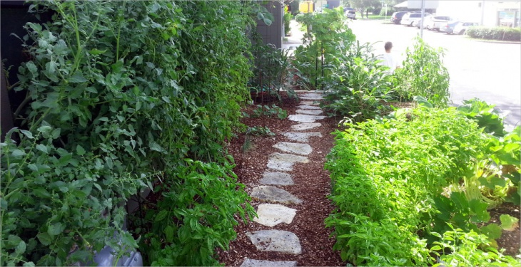 Outdoor Landscape Edible Garden