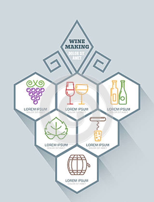 Wine Making Infographic Design