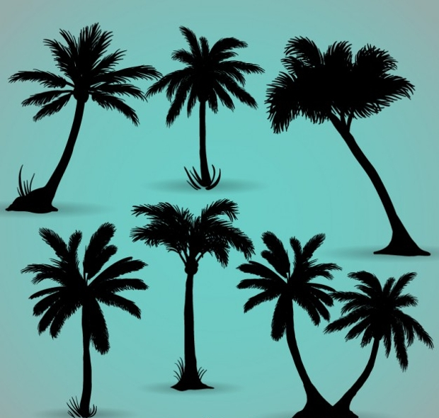 Palm Tree Silhoutte Vector